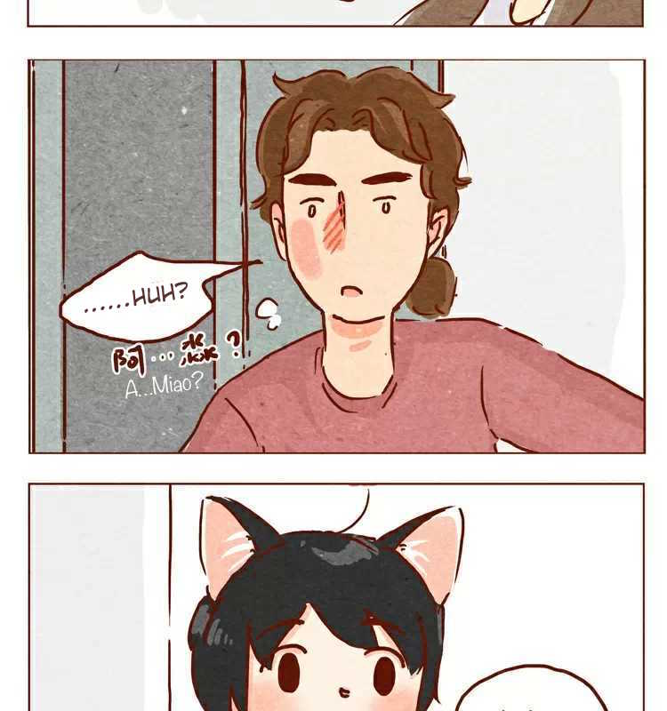 Hey, Your Cat Ears are Showing! - Chapter 22